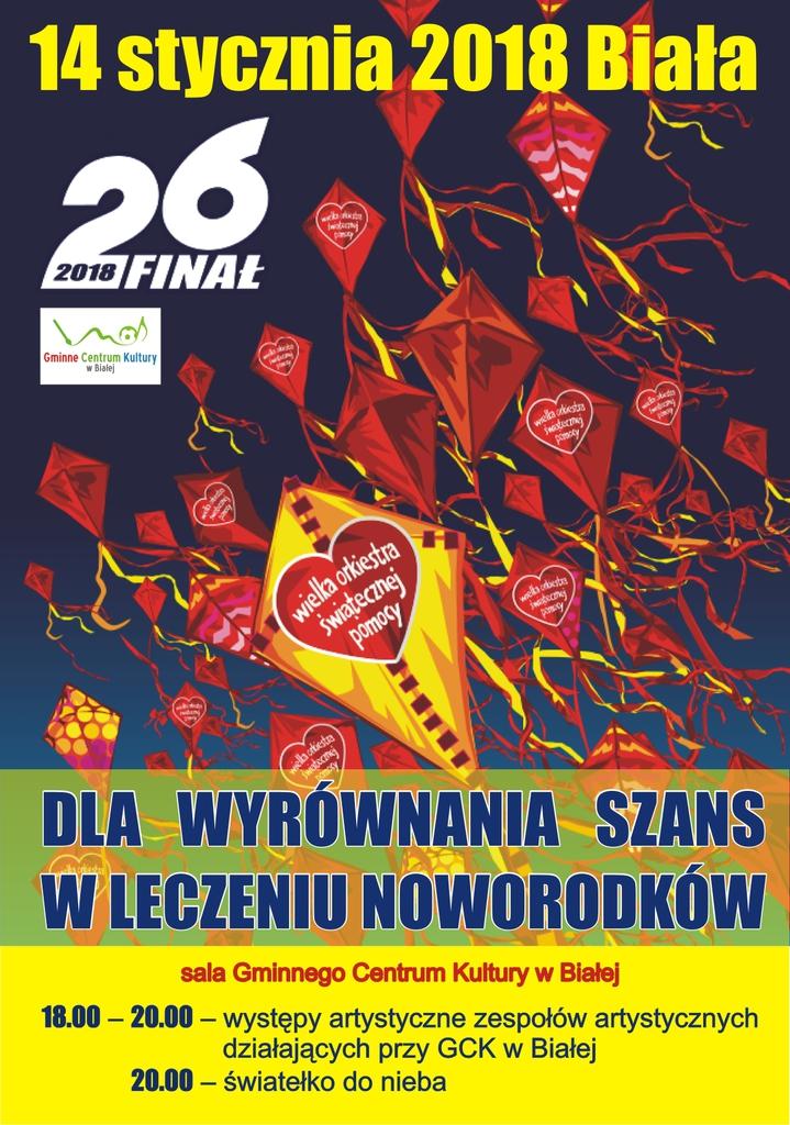 WOSP_koncert (2).jpeg