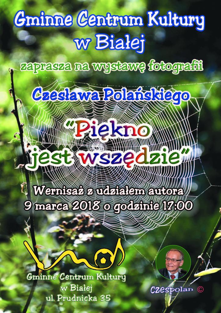 Plakat Biała 2018 (CMYK).jpeg