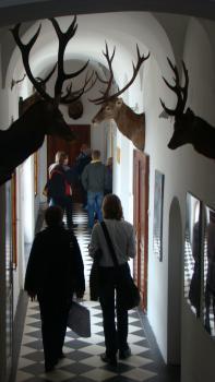 Zamek w Linchrtowie