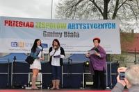 Galeria Przegląd zespołów artystycznych