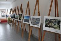 Galeria ekoodkrywcy